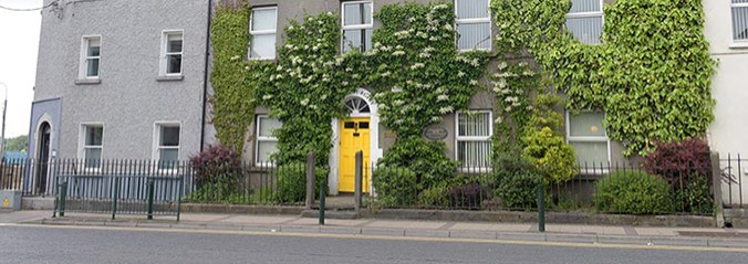 Terrace house covered in ivy with yellow door