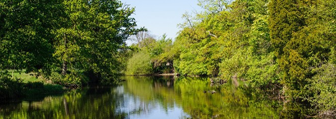 View on the river Liffey in spring time, Co. Kildare, Ireland